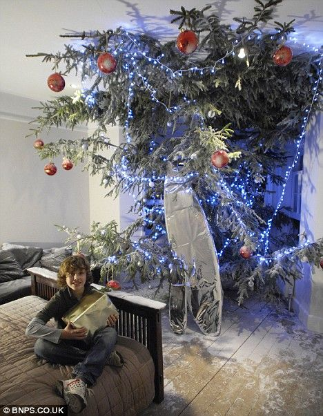 A christmass tree that stretches from the floor through the roof  of the house (5 photos)