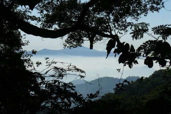 Mount Mabu, the last untouched place n the world (17 photos)