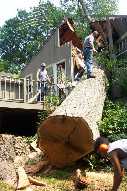 Big tree fell down on a house (3 photos)
