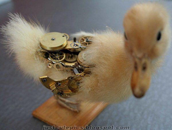 Mechanical animals look real (14 photos)