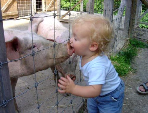 Kisses with animals (13 photos)