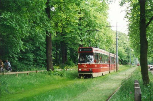Grass on the tramway rails. Good idea and it's beautiful! (7 photos)