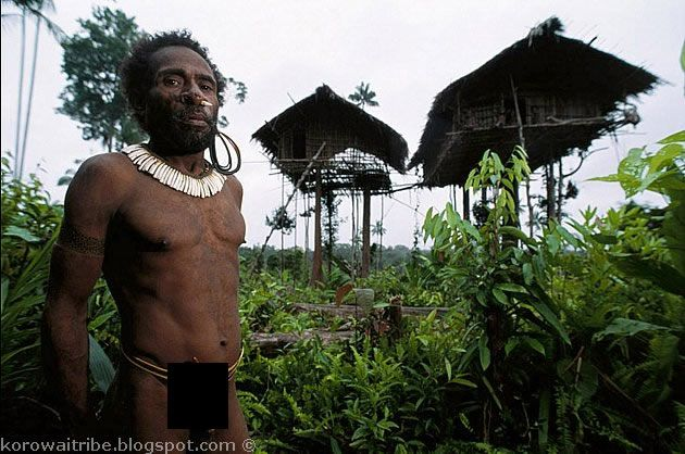 Unusual Aborigines that live on the trees (21 photos)