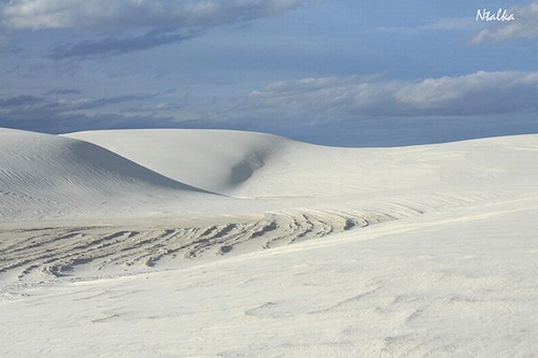 White sands of New Mexico (19 photos)