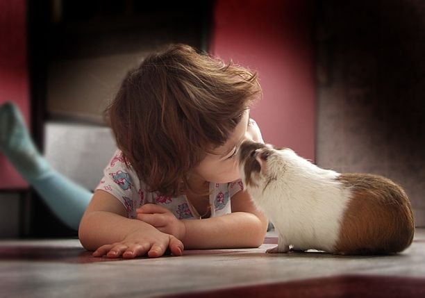 Positive emotion of the day. Cute kids (31 photos)