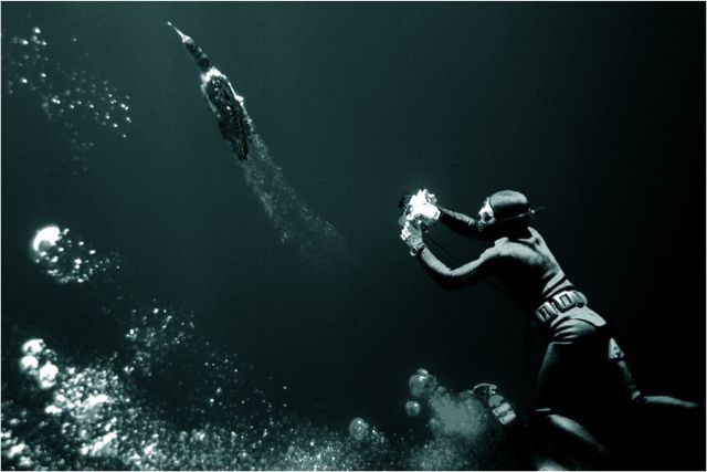 Scuba Diving (21 photos)