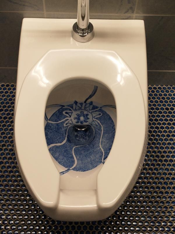 The most unusual toilets (14 photos)