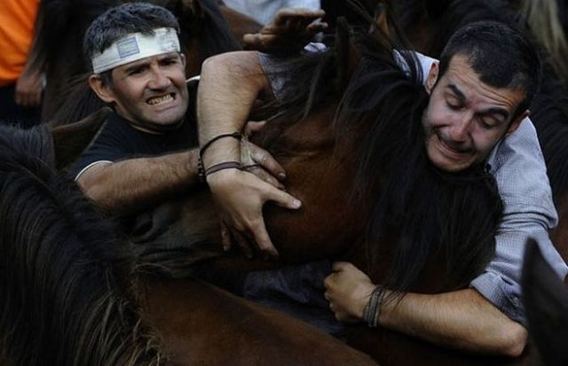 People and horses (14 photos)