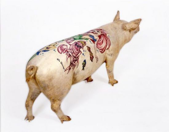 Tattooed pigs (26 photos)