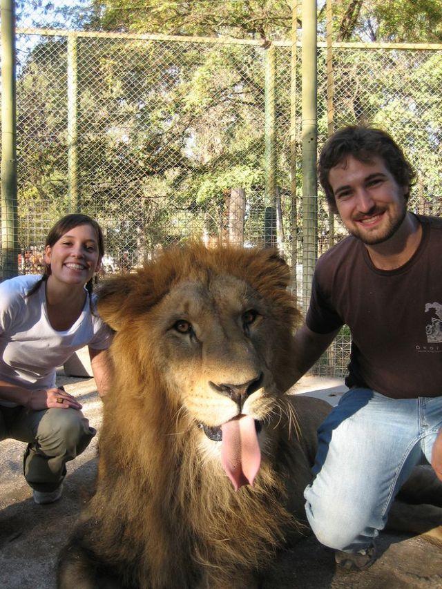 لوجان, حديقة ,الحيوان ,الأخطر, العالم