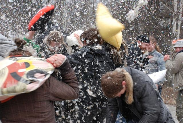 Pillow fight (23 photos)