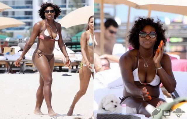 Serena Williams in bikini. Whatever, she's good in tennis :) (9 photos)