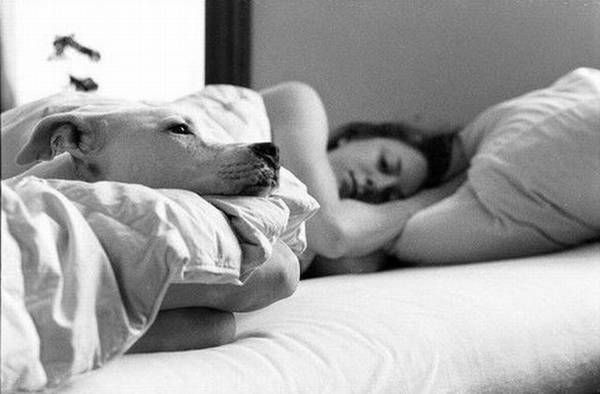 Women and dogs (17 photos)