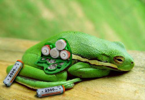 Creative stuff with batteries (17 photos)