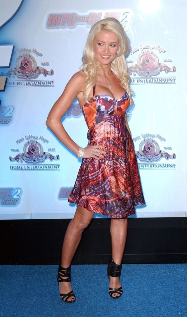 Holly Madison (7 photos)