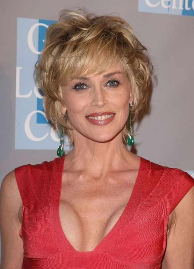 It seems that Sharon Stone went under the knife (14 photos)