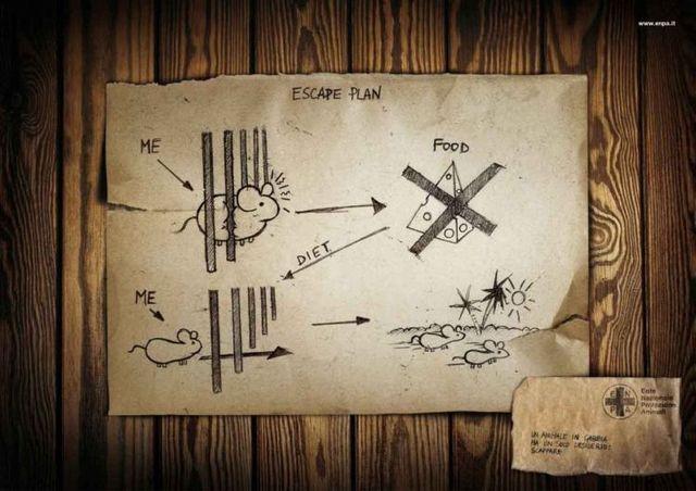 铁血网提醒您:点击查看大图