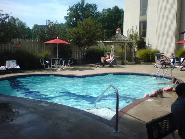 The most unusual swimming pools (19 pics)
