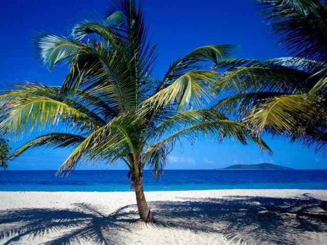 carribean islands 14 - Caribbean Islands