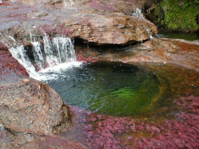 نهر Cano Cristales وهو يعتبر أجمل و أروع نهر في العالم Rainbow_river_02
