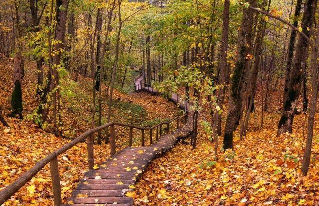 autumn latvia 17 - Autumn in Latvia