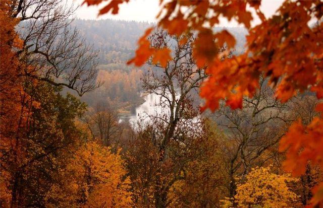 autumn latvia 28 - Autumn in Latvia