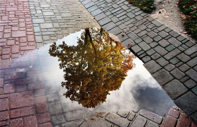 autumn latvia 35 - Autumn in Latvia