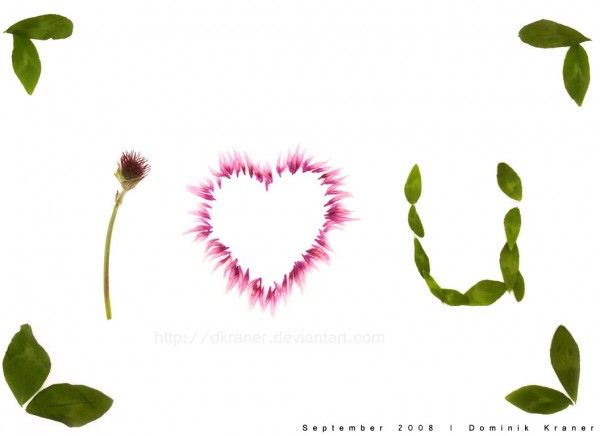 Aşk Her Yerde
