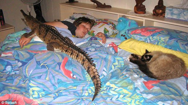 The Most Unusual Pet (8 pics)