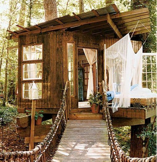 Όμορφα σπίτια, χτισμένα πάνω σε δέντρα