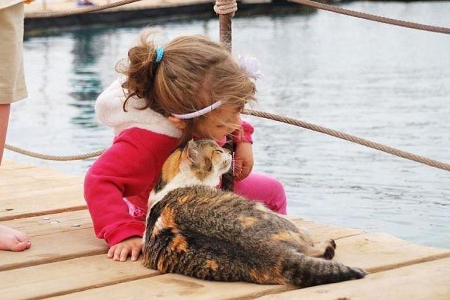 See cool images at Izismile.com