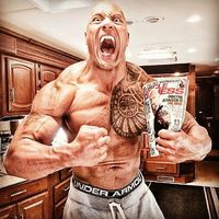 The Rock's Body Can be Yours If You Follow These Steps  (13 pics)