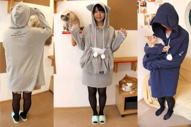 If You Have A Kitty Then This Cat-Hoodie Is For You